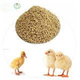 Еда поголовь еды цыплятины лизина