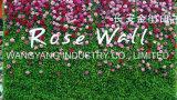 가짜 시뮬레이션 로고 녹색 식물 벽