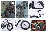 Bicicletta elettrica leggera della lega di alluminio 2016 E con la Batteria-Myatu nascosta
