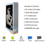 Montagem ao ar livre legível IP65 da parede do indicador do monitor do LCD de 55 polegadas da luz solar (MW-551OB)