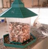 Фидер птицы OEM напольный вися пластичный прозрачный