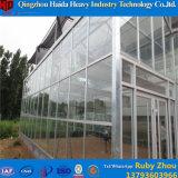 Hydroponic Serre van het Glas van de Prijs van de Fabriek van het Systeem