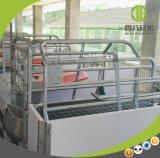 Planta de parada galvanizada da caixa para a exploração agrícola de porco