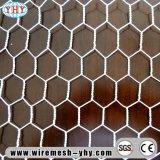 Electro galvaniseerde het Hete Ondergedompelde Gegalvaniseerde pvc Met een laag bedekte Hexagonale Opleveren van de Draad
