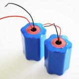 Un38.3 11ah 12V Lipo4 EV Batterie-Satz-Solarlithium-Batterie mit BMS