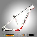 Professional 29er VTT vélo de carbone le châssis avec 41mm Tube de direction