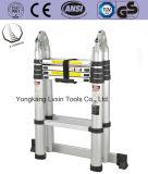 Heißer Verkaufs-teleskopische Strichleiter mit Seite zwei