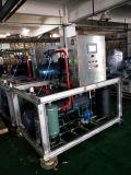 20t per Machine van het Ijs van de Vlok van de Dag de Industriële