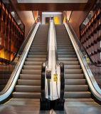 Preiswertes Rolltreppe-Einkaufszentrum verwendete elektrische Rolltreppe