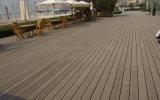 Gli anti insetti impermeabilizzano la plancia di legno del composto del PE della decorazione della costruzione di WPC
