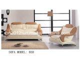Sofá del cuero genuino de la sala de estar (B-850A)