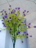 Migliori fiori di vendita dell'alito Gu-Zxr410193653 del bambino