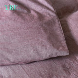 Bedding Set amichevole del cotone di Eco del re Sized per l'università