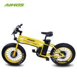 20 pulgadas 750W 48V barata 4.0 Neumático Fat bicicleta eléctrica Dirt Bike