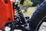Fiets van de Berg van de Band van de Macht van Leili 26*4.0 Ebike 3000W 72V de Grote Vette Elektrische