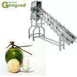 Fibra di sbucciatura della fibra di cocco della guarnizione tagliata metà della noce di cocco che frantuma tagliuzzamento della polvere di sbucciamento grattare che fa la tagliatrice