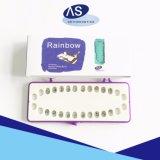 De tand Tanden van de Steunen van het Metaal van Apparatuur Orthodontische maken recht