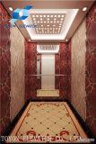 450kg pequena sala da máquina do elevador de passageiros fabricados na China