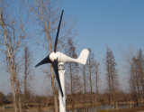 turbine de générateur de vent 100W pour la maison