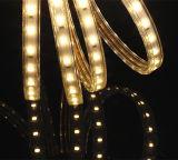 정원 훈장을%s 최고 밝은 온난한 백색 SMD5630 LED 지구