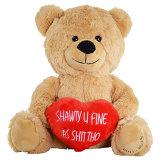De zachte BontTeddybeer van de Pluche met de Rode PromotieGiften van de Valentijnskaart van het Hart
