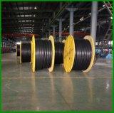 De vuurvaste Flexibele Kabel van de Controle van de Mijnbouw van pvc van RoHS van de Draad van het Koper Rubber Geïsoleerdet Lassende Elektrische Elektro