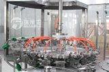 Machine de remplissage en plastique de l'eau de bouteille à vendre