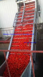 Goma de tomate caliente de la rotura Brix 28-32% pila de discos con el bolso aséptico 220L en tambor