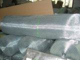 Elettrotipia Galvanized&#160 di alta qualità; Square Wire Maglia