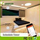 30W 5m WiFi Strip Light LED multicolore à puce Smart Phone Voyant de contrôle de chaîne pour partie, décoration de Noël