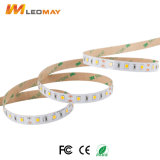 Piccole LED strisce del chip SMD3535 LED di alto lumen