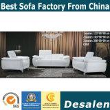 Sofá moderno negro, muebles de cuero del sofá (C40)