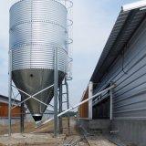 Matériel de ferme avicole pour la couche et l'éleveur de grilleur