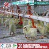 H Type бройлерных отсека для аккумулятора Птицеферме птицы оборудования