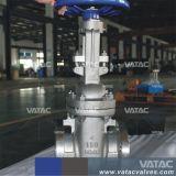 De Klep van de Poort van het Roestvrij staal van Vatac