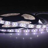 Comercio al por mayor 5m/Rollo SMD 5730 Magia de retroiluminación LED DMX tira de luces.