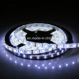 12V SMD LED flexibles impermeables 5050 Strip