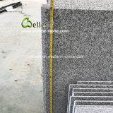 De opgepoetste Lichtgrijze Tegel van de Muur van het Graniet met Één Lange Kant Afgeschuinde Rand