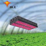 고등급 LED는 의약 플랜트를 위해 가볍게 또는 나물 또는 야채 증가한다