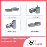Magnete magnetico di Ainico NdFeB di disegno del cliente N52 forte con Assembly&Pot