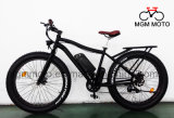 최신 판매 눈 자전거 바닷가 함 산 전기 자전거 500W