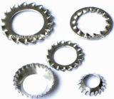 Rondelle de freinage de dent d'acier inoxydable/rondelle dentelée (DIN6798)