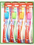 Toothbrush adulto de 2017 vendas populares com tampão