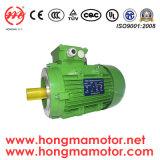 4pole-30kwの2HMIシリーズMotor/Ie2 (EFF1)高性能の電動機