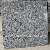 G418 Wave White Granite Polished Tile / Step avec Bullnose Edge