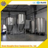 Industrielles Brauengerät, Fertigkeit-Bier, das Installationssatz bildet