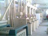 Macchinario automatico del laminatoio della farina di frumento con capienza 85tpd