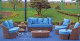 Insiemi esterni del sofà, mobilia del rattan del patio, insiemi del sofà del giardino (SF-315)