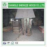 madera contrachapada Shuttering impermeable de 1220*2440m m Dynea