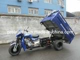 유압 Dump/5 바퀴 기관자전차 (TR-8)를 가진 200cc 화물 세발자전거